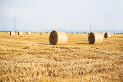 Hay Bale in Field Royalty Free Stock Photos