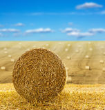 Hay bale in field Stock Photography