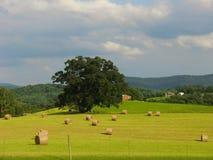 Hay bale field faraway mountain landscape Stock Photography