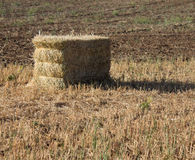 Hay Bale in Field. Hay bale sitting in harvested field Royalty Free Stock Images