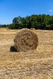 Hay bale in the field Royalty Free Stock Photography