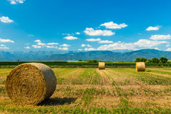 Hay bale in the fields of italy royalty free stock photo