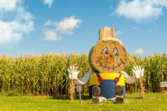 Hay Bale Figure Stockfotos