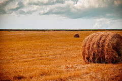 Hay bale in the foreground of rural field Royalty Free Stock Photos