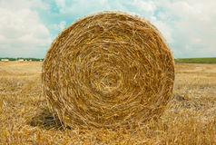 Hay bale in the foreground. In rural field Royalty Free Stock Images