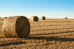 Hay bale in the foreground of rural field Royalty Free Stock Image