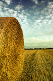 Hay bale in a french field. French countryside with hay bale Royalty Free Stock Photo