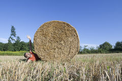 Hay bale funny tragedy Royalty Free Stock Images