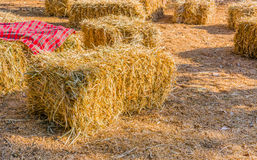 Hay bale on the ground. Image of Hay bale on the ground Royalty Free Stock Images