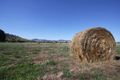 Hay bale - landscape Royalty Free Stock Images