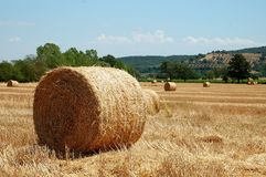 Hay Bale Landscape Royalty Free Stock Photo