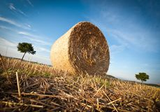 Hay Bale on the late Afternoon Royalty Free Stock Image