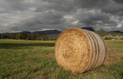Hay bale in late afternoon light Stock Photo