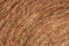 Hay Bale Macro. Close-up of a bale of hay with rich texture Stock Photo