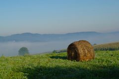 Hay Bale in Misty Morning Stock Photo