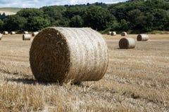 Hay Bale nel campo di stoppia Fotografia Stock Libera da Diritti