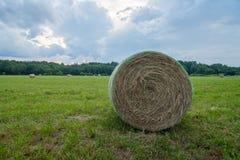 Hay Bale no campo Foto de Stock