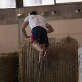 Hay Bale Obstacle Running Contest d'intérieur : Balle de montée de personnes avec la corde images libres de droits
