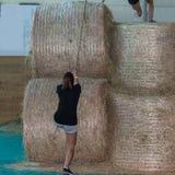 Hay Bale Obstacle Running Contest d'intérieur : Balle de montée de personnes avec la corde photo stock