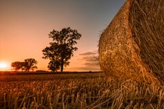 Free Hay Bale On Harvested Wheat Field At Sunset Stock Image - 189583221