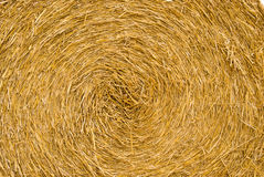 Hay bale rolled up Stock Image