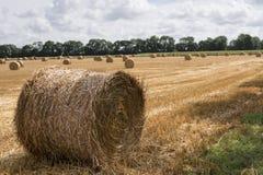 Hay Bale rond dans un domaine Images libres de droits