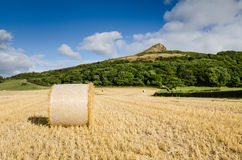 Hay bale at Roseberry Topping. Roseberry Topping is an iconic landmark on the border of North Yorkshire an Teesside Stock Photography