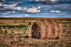 Hay Bale roulé à une ferme Images libres de droits