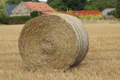 Hay bale round Stock Photos