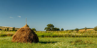 Hay bale on a rural field Stock Image