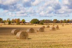 Hay Bale Scenery stock photos