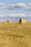 Hay Bale Scenery Royalty Free Stock Photography