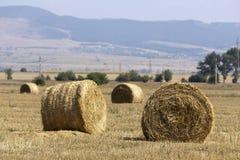 Hay Bale Scenery. Straw bales on farmland Royalty Free Stock Image
