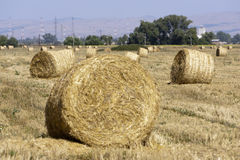 Hay Bale Scenery. Straw bales on farmland Stock Photos