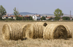 Hay Bale Scenery. Straw bales on farmland Royalty Free Stock Images