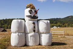Hay Bale Snowman In Summer Stockbild