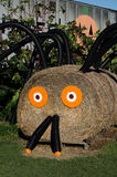 Hay bale spider Royalty Free Stock Images