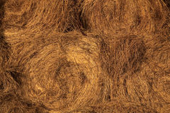 Hay bale spirals. Closeup view Stock Images