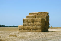 Hay Bale Stack Royalty Free Stock Image