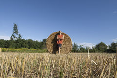 Hay bale standing man Royalty Free Stock Images