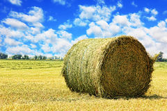 Hay bale on stubble field against cloudy sky. Royalty Free Stock Image