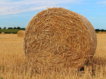 Hay bale on stubble field Royalty Free Stock Photos