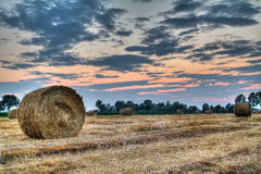 Hay bale. At the sunset Stock Photography