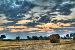 Hay bale at the sunset Royalty Free Stock Images