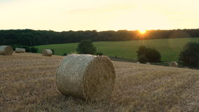 Hay bale at sunset stock video
