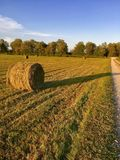 Hay bale in the sunset. Hay bale in the field on a warm summer evening Stock Images