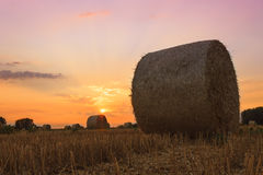 Hay bale at sunset. In Hungary Royalty Free Stock Images