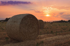 Hay bale at sunset Stock Photography