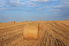 Hay bale at sunset Royalty Free Stock Photos