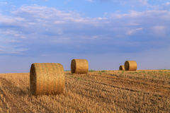 Hay bale at sunset Stock Image